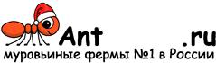 Муравьиные фермы AntFarms.ru - Краснодар